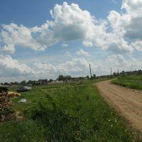 Вид в сторону Фаленской бывшей фермы. Июнь 2010 г., Фаленки
