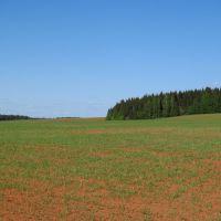 Западный склон холма, Халтурин
