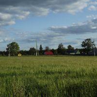 Деревня Кусакины, Халтурин