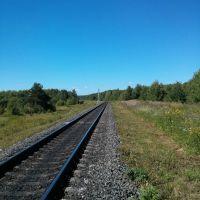 Железная дорога уходит из Юрьи, Юрья