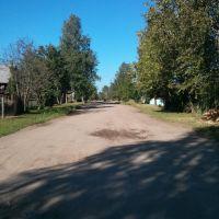 Улица Гоголя, Юрья