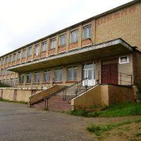 Школа / School, Визинга