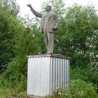 Lenin, Визинга