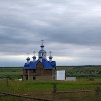 В деревне..., Визинга