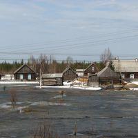 Сыктывдинский район, Коми Республика, Россия, Вожаель