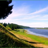 Река Вымь в районе деревни Кошки, Республика Коми, Вожаель