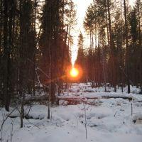 заходящее солнце, Вожаель