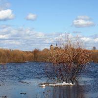 Spring on Vym river, Вожаель