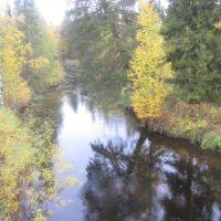 Осенняя сказка, Вожаель