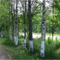 ...2008., Печора