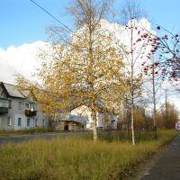 Начало октября 2011, Печора