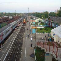 Alexiy в Сосногорске, Сосногорск