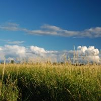 Летний пейзаж, Сыктывкар