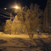 Усинск зимой, Усинск