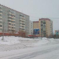 Вид Нефтяников, Усинск