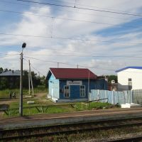 Станция Антропово, Антропово