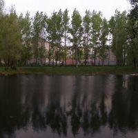 Пруд у 2-й школы, Волгореченск