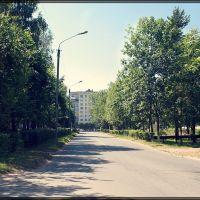 г. Волгореченск, Волгореченск