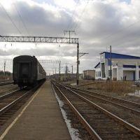 Станция Зебляки, Зебляки