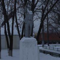 Ленин в Шарье, Шарья