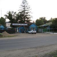 Юридические услуги 22.06.2008 - Legal services of lawyers, Курганинск
