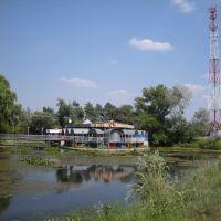 Островок, Курганинск
