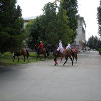 Казаки, Курганинск