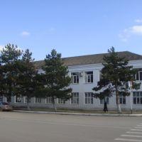 Первая школа Абинска, Абинск