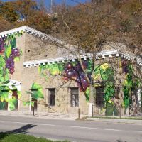 Абраульское граффити / Graffity, Абрау-Дюрсо