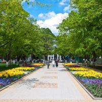 Городской парк, Армавир