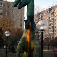 Афипский динозавр., Афипский