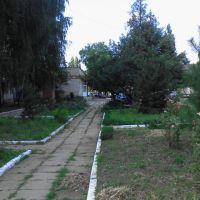 The hospital. Courtyard. July 2013. / Больничный двор. Июль 2013., Ахтырский