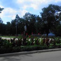 View to the boulevard. Monument to Maxim Gorky. July 2013. / Вид на бульвар. Памятник М.Горькому. Июль 2013., Ахтырский