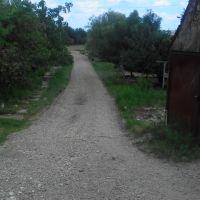 Way to the fields. July 2013. / Дорога на большую поляну. Июль 2013., Ахтырский
