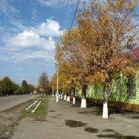 улица Мира, 25.10.2006., Белореченск