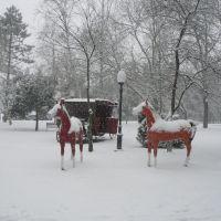Лошади в парке, Белореченск