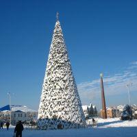 Новогодняя ёлка возле автостанции, 08.01.2009., Белореченск