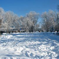 Гор-парк зимой, 08.01.2009., Белореченск