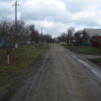 Улица Кооперативная, Выселки