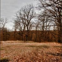 Зимняя поляна ... - Winter clearing ..., Горячий Ключ
