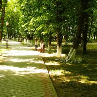 Аллея в Городском парке, Горячий Ключ