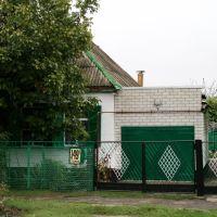 Loskutov 1, Динская