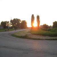 Солнце рулит, Динская