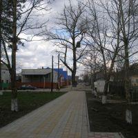 Парк 2011, Динская