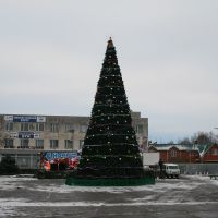 Центральная площадь. Новогодняя елка., Динская