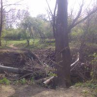 Однажды весной поломался мост, Ильский