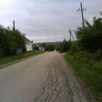 Улица Некрасова, Ильский