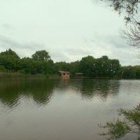 возле Красносельского, Калинино
