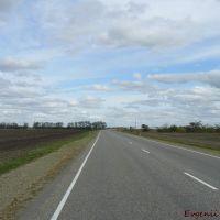 Путь в Курганинск..., Калинино