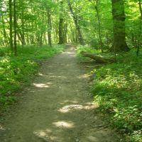 The Trail to Rufabgo, Каменномостский